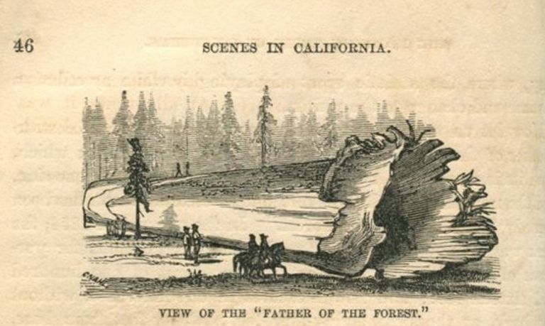 SCENES OF WONDER AND CURIOSITY IN CALIFORNIA: Illustrated by Ninety-two Well Executed Engravings. J. M. Hutchings.
