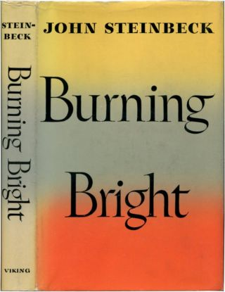 BURNING BRIGHT: A Play in Story Form.