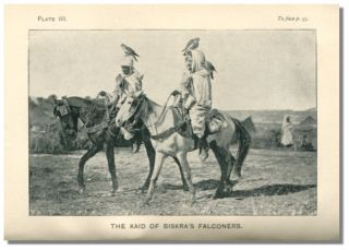 BISKRA: and the Oases and Desert of the Zibans, with Information for Travellers.